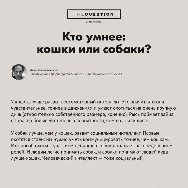 самые-странные-вопросы3.jpg