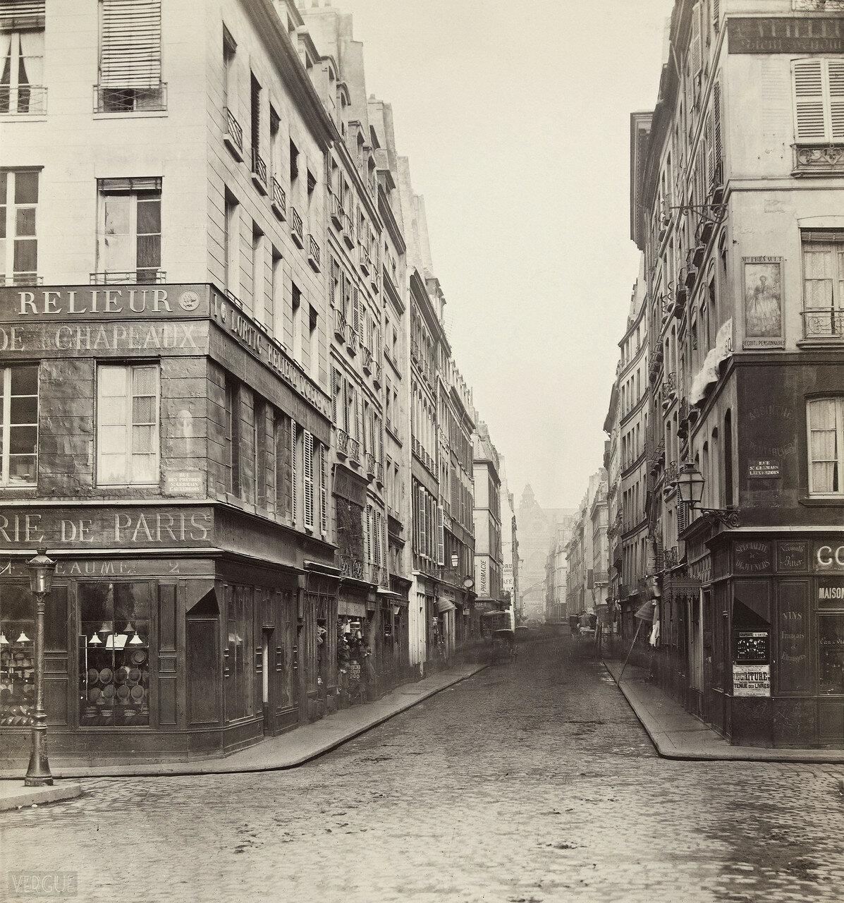 Рю до ля Монэ. 1865