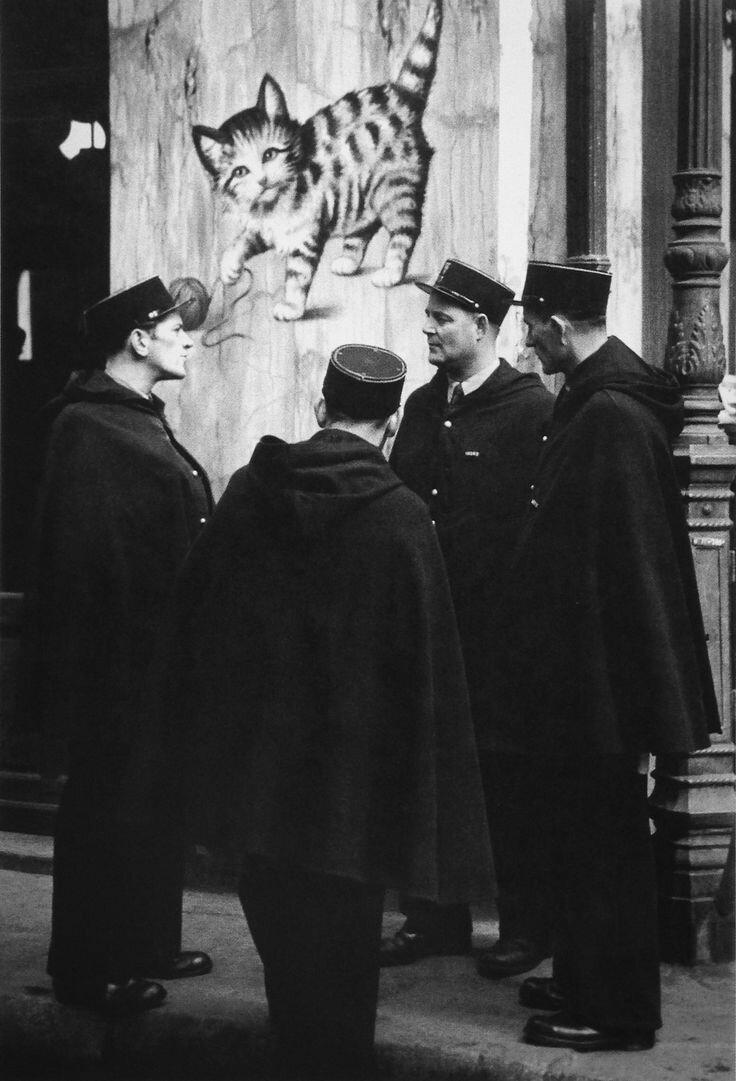 1939. Кот и флики