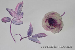 Мастер-класс. Английская роза «Оливия» от Vortex  0_fc0f9_a61989db_M