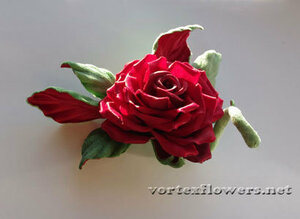 Мастер-класс. Роза  «Пышка» от Vortex  0_fc145_81c4cc99_M