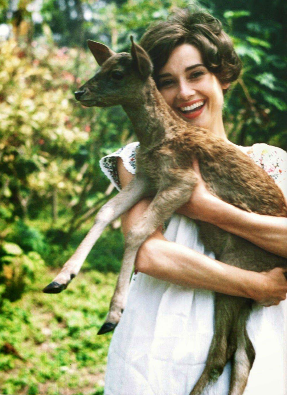 Лучшим другом легенды кино и иконы моды Одри Хепберн был оленёнок. Это животное в жизни актрисы появ