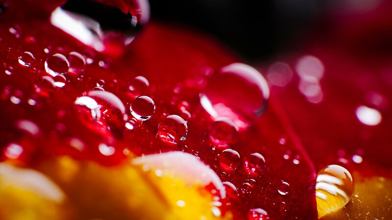Waterdrops by J.P.Peter