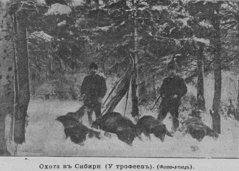 Охота в Сибири (у трофеев). 1903 год