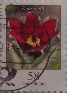 цветочек 58
