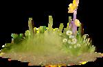 grass (45).png