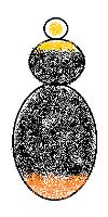 Bombus lapidarius male