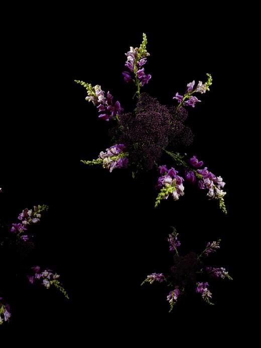 Flowerworks, Sarah Illenberger4_1280.jpg
