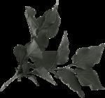 feli_btd_foliage1a.png
