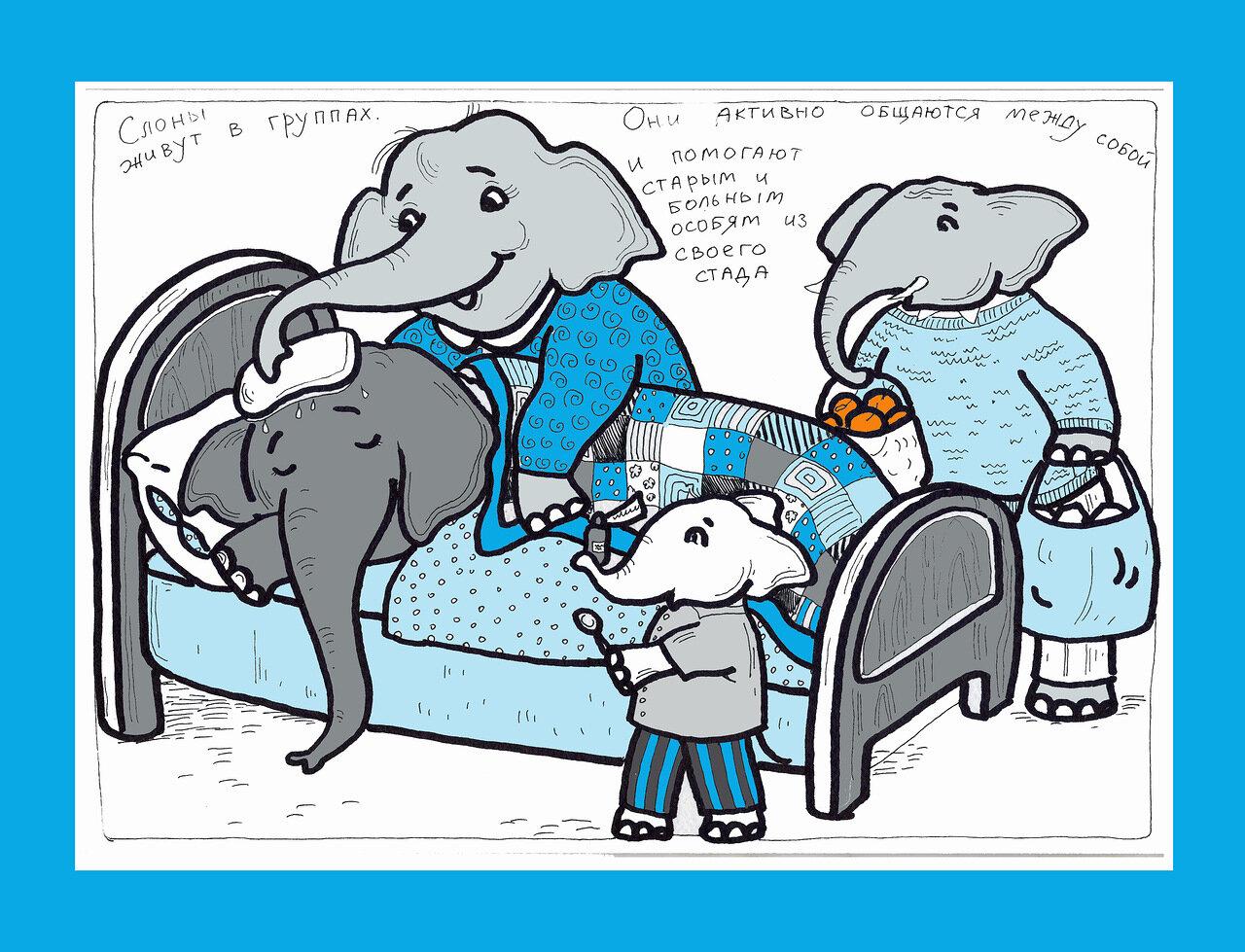 слон болеет.jpg