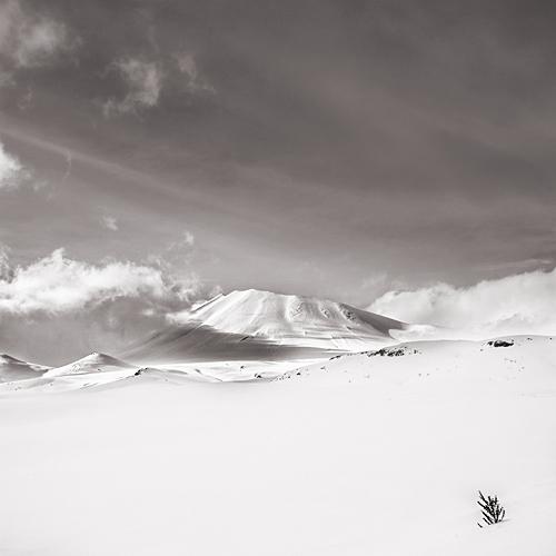 Фотограф Ebru Sidab50r. Белое безмолвие в фотосете `White story`.
