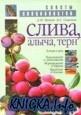 Книга Слива, Алыча, Терн