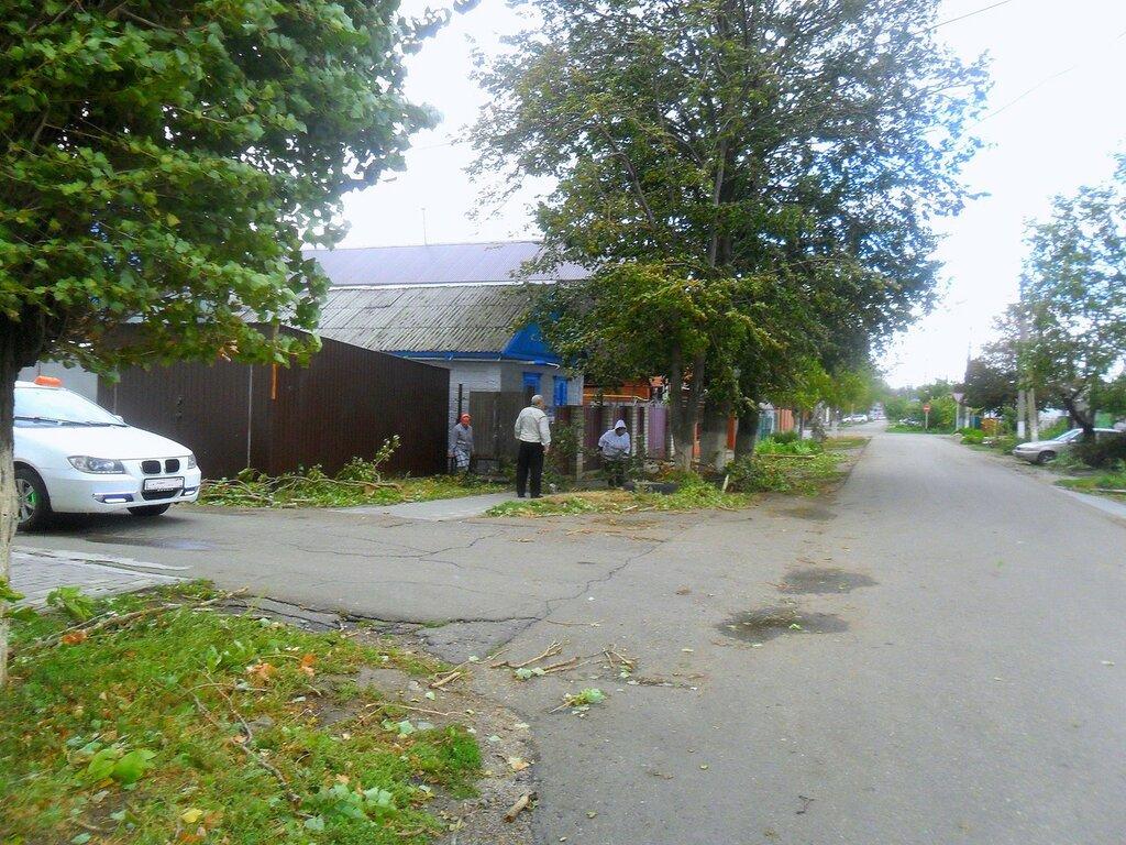 Сентябрь, Азовское побережье, осенние картинки 03