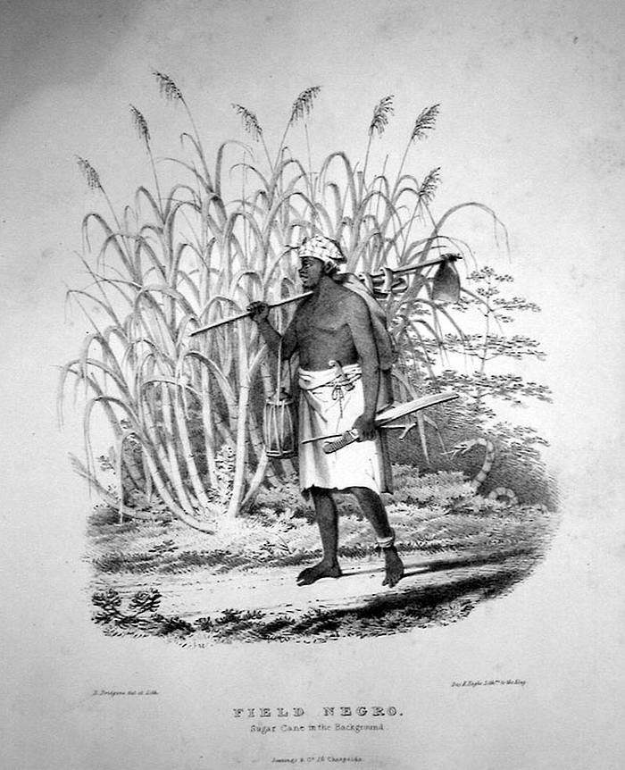 Раб, отправляющийся на полевые работы (Тринидад, 1836 год)