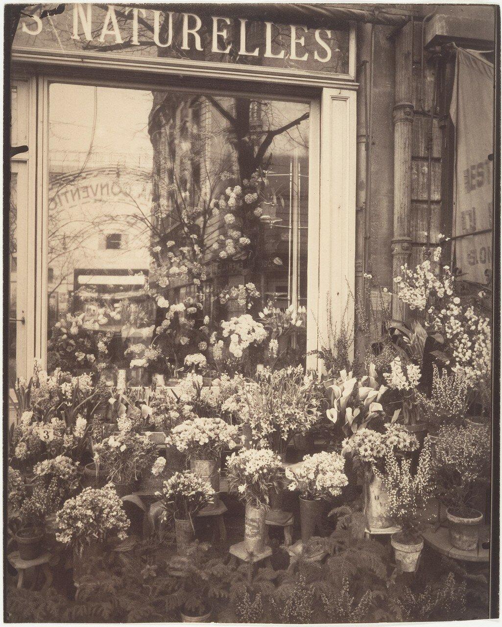1925. Цветочный магазин