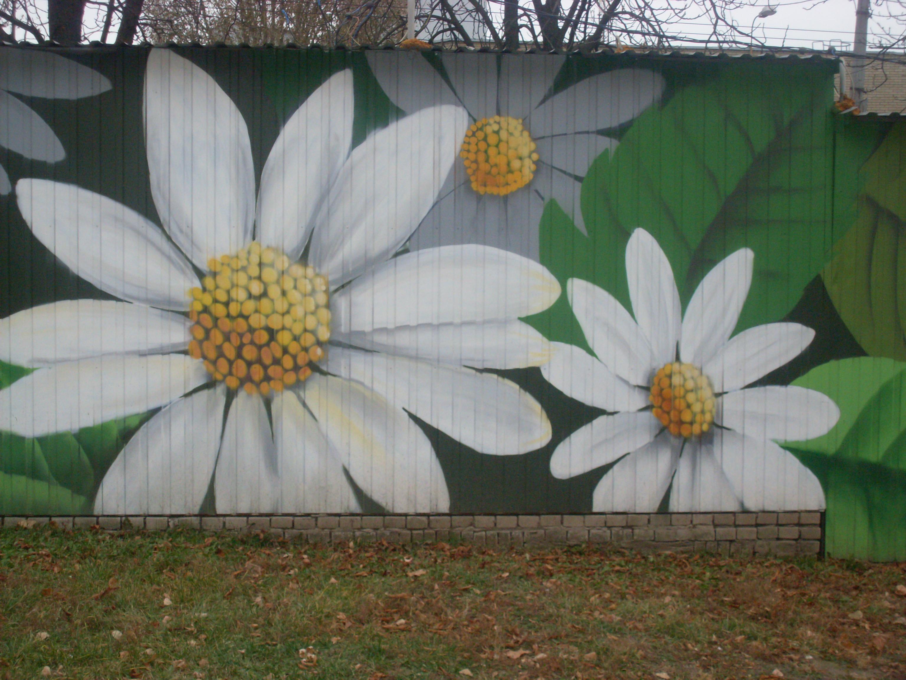 Граффити ромашки