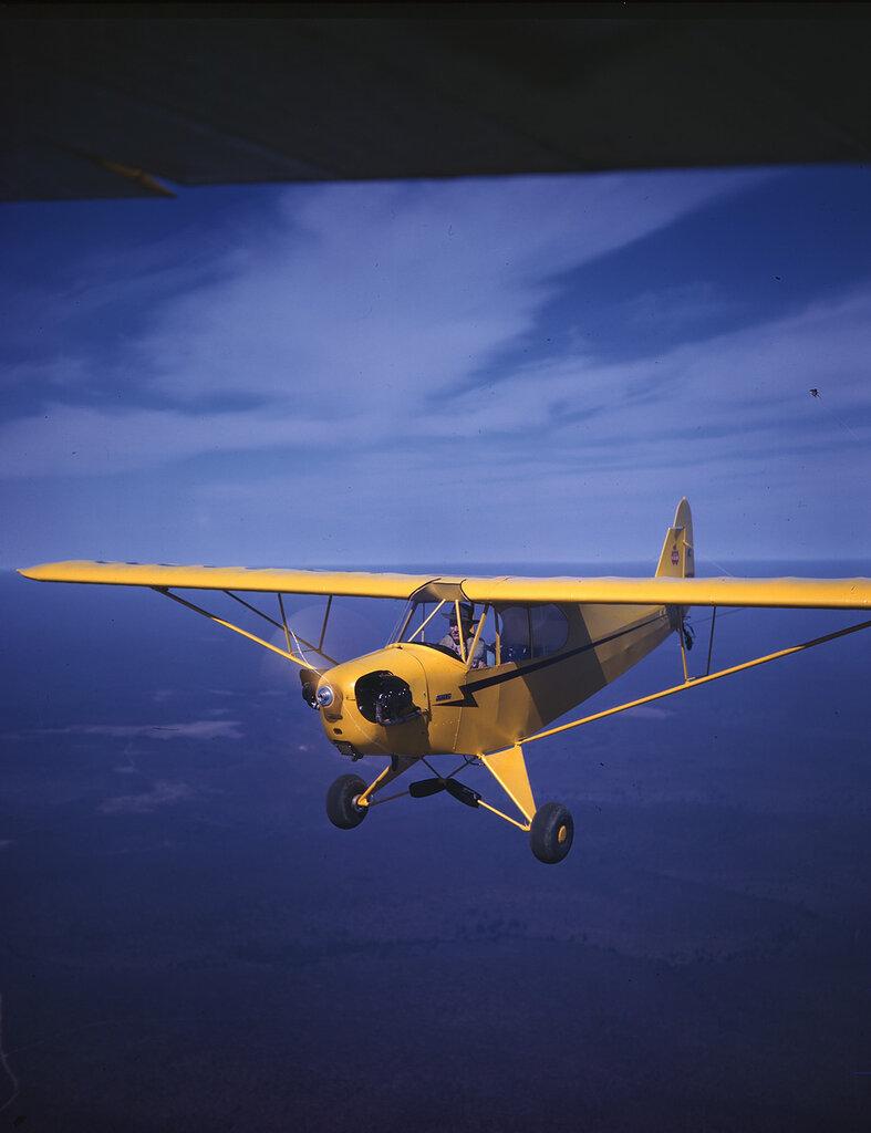 Piper J-3C Cub (NC88530) in flight
