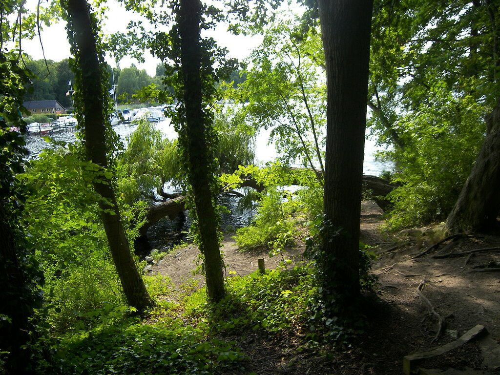 2015-07-15  Berlin (Alt-Tegel) - Вид из парка на местное озеро. Вон там слева - стоянка яхт. Частных.