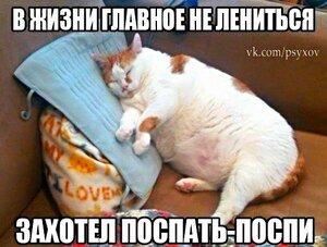 В жизни главное не лениться. Захотел поспать - ПОСПИ :)))