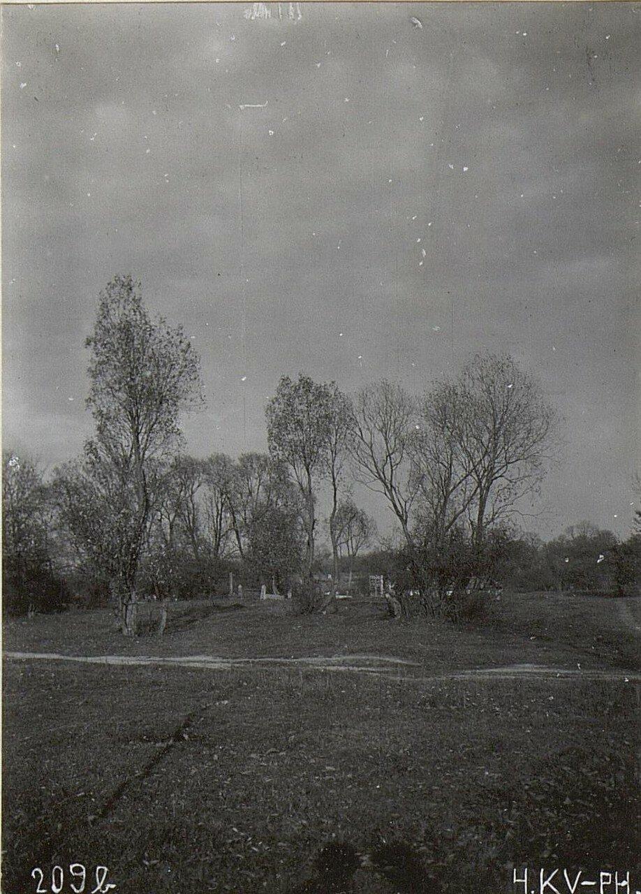 Еврейское кладбище и окружающие его деревья
