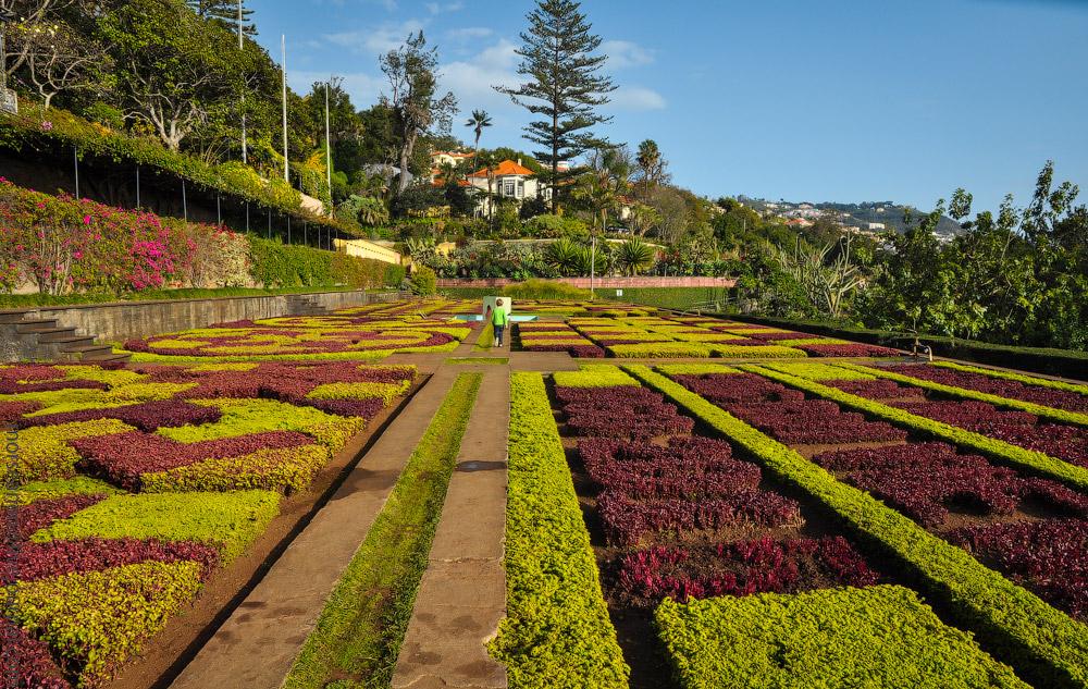 Madeira-Garten-(19).jpg