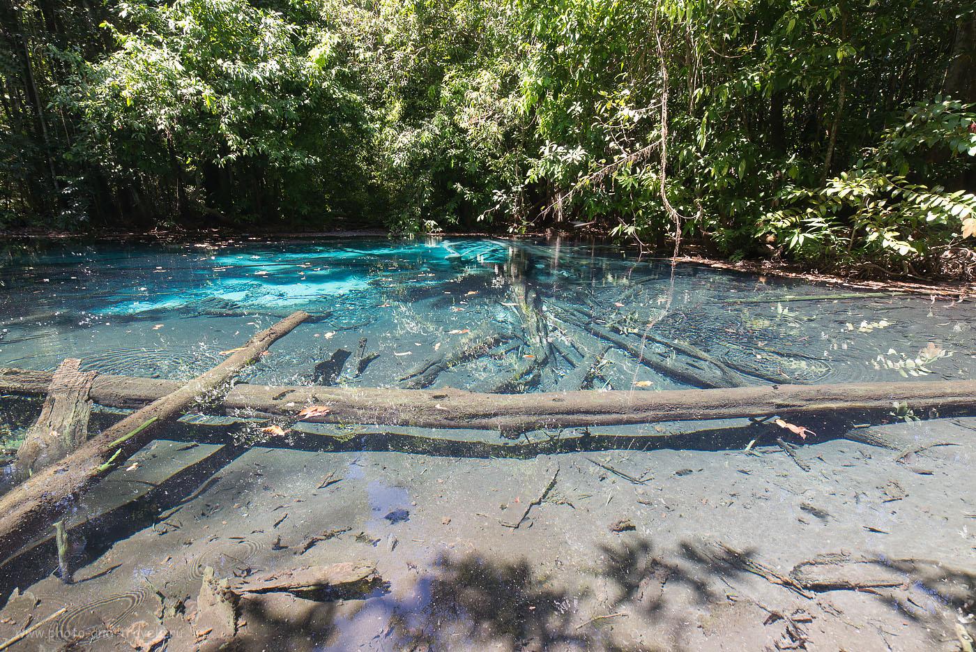 Фотография 16. Синий бассейн (Blue Pool) в парке Khao Pra Bang Khram Wildlife Sanctuary в провинции Краби. Читайте отчет о самостоятельной экскурсии