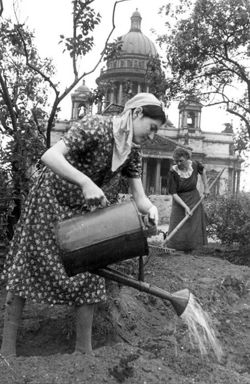 Женщины обрабатывают землю под огород на площади перед Исаакиевским собором