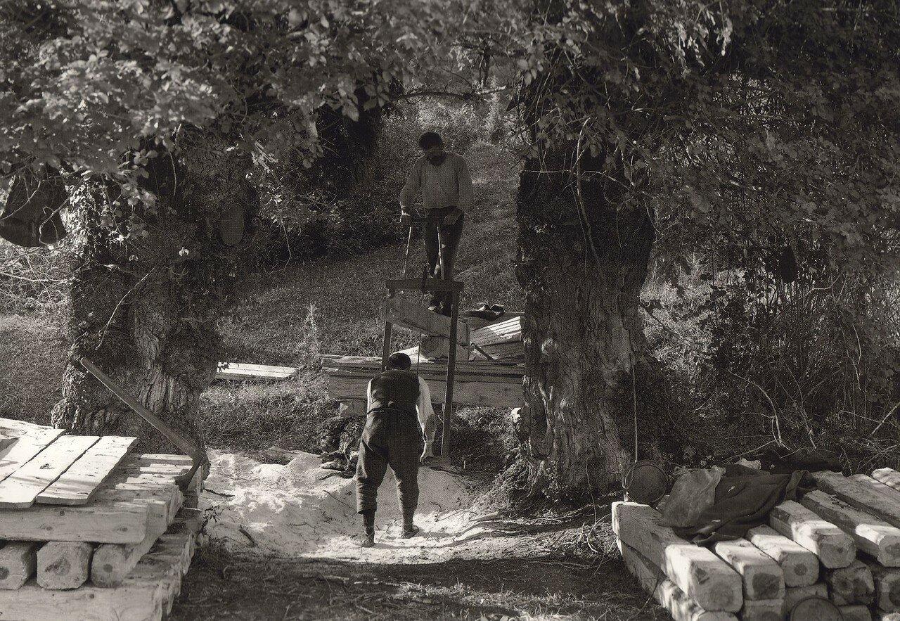 1914. Олимп