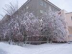 Зима. Рябины еще много