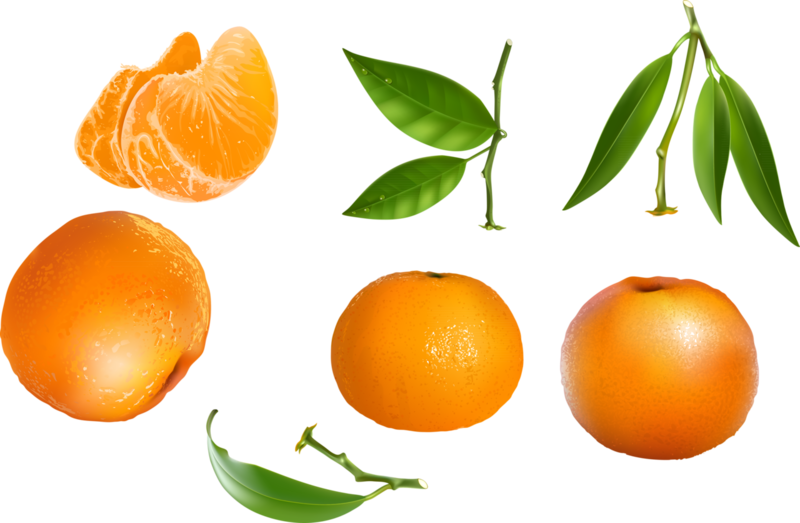 фрукты и ягоды (11).png