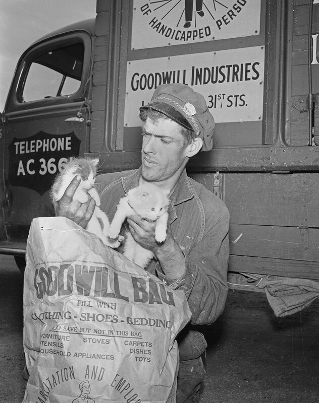 Goodwill driver and kittens in Denver, Colorado, between 1950 and 1960