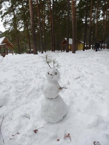 Красавица-зима
