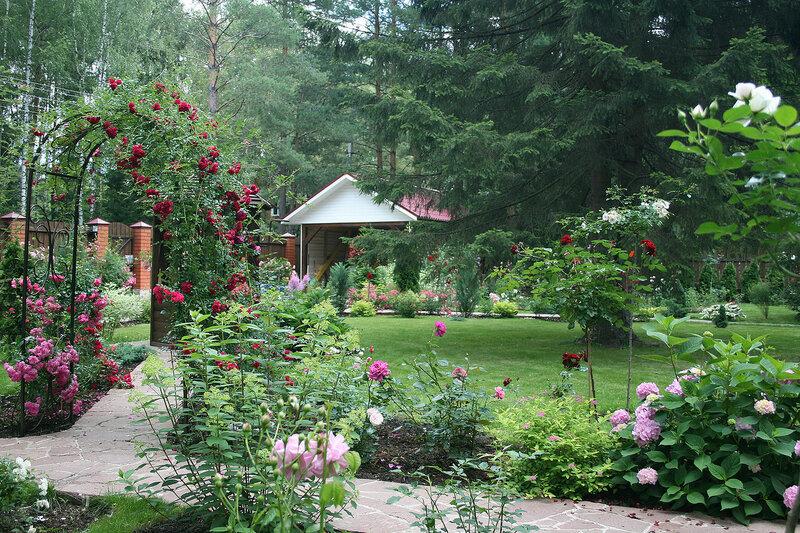 говоря красивые сады дачников подмосковья фото лютые