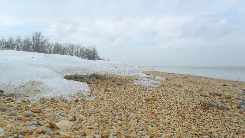 Берег, льды, у моря ...SAM_5594.JPG