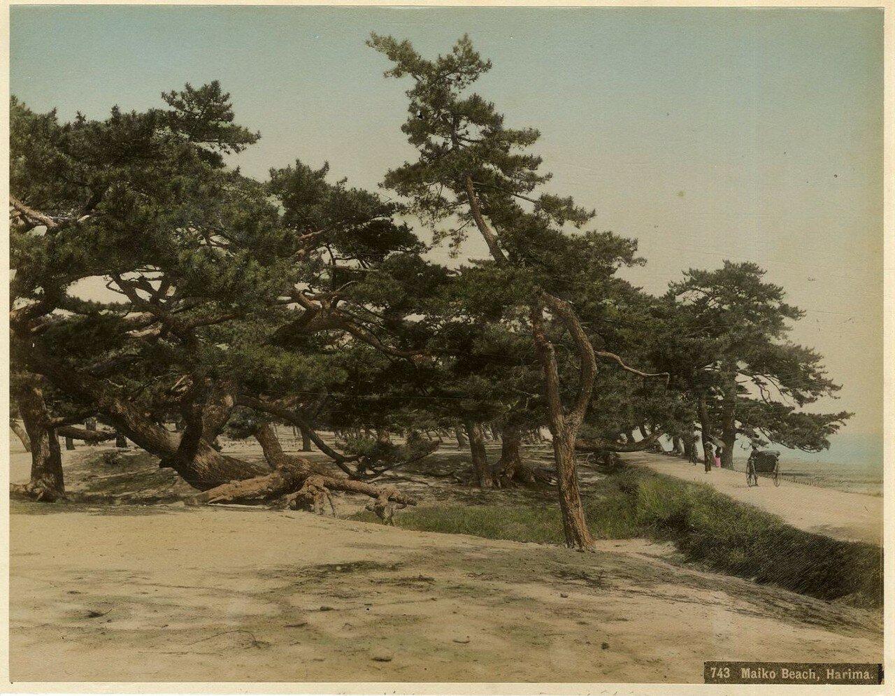 Харима. Пляж Майко