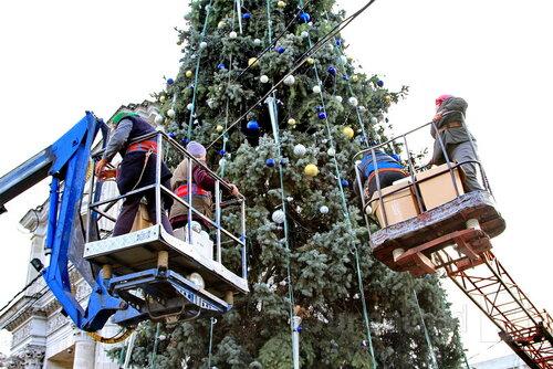 Кишинёв готовится к праздничному открытию Новогодней ёлки