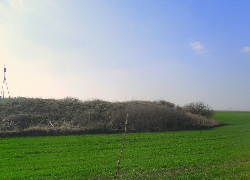 В поле курган ... SAM_5821.JPG