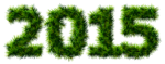 2015_Pine_Transparent_Clipart_Picture.png