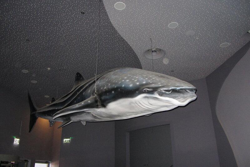 Повешенный кит