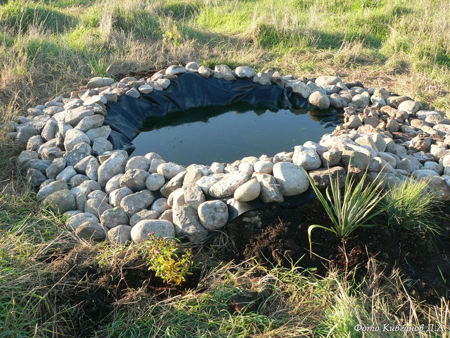 Водопой для птиц на острове Змеиный