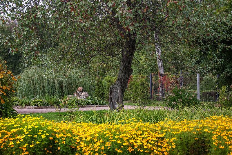 Золотой сад