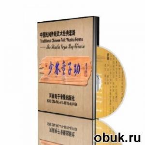 Шаолиньские упражнения юноши / The Shaolin virgin boy exercise (2011) DVDRip