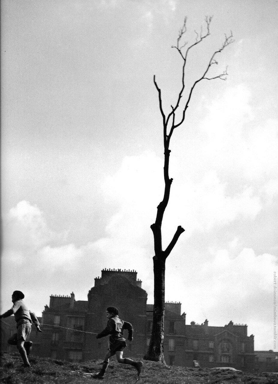 1930-е. Дерево