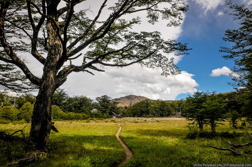 Аргентинская Патагония. Гора Фицрой
