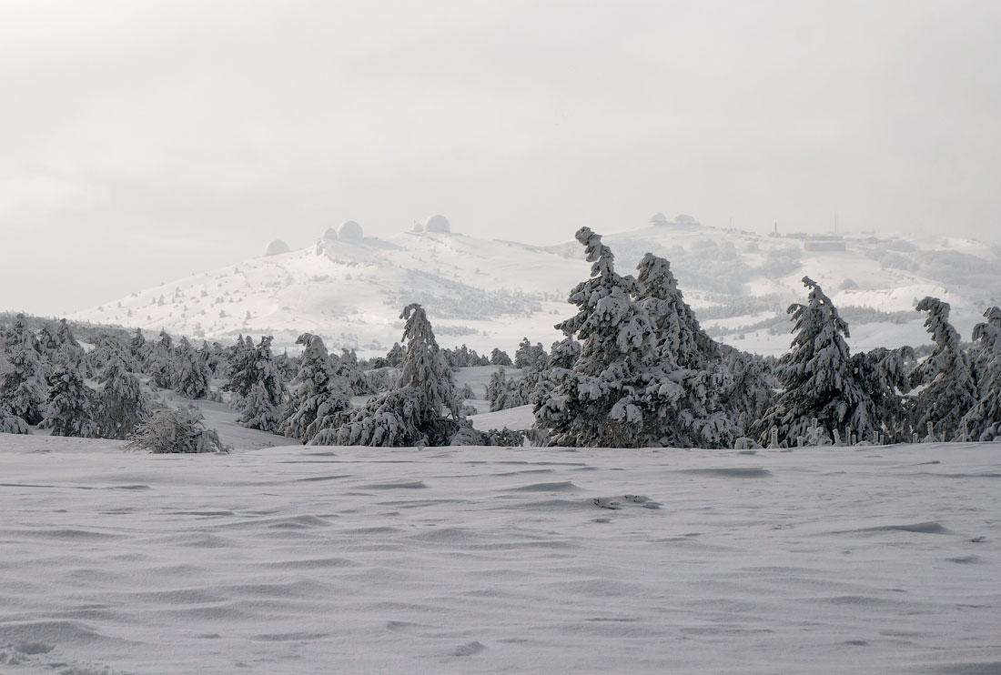 Рождественская прогулка по Боткинской тропе с неожиданным продолжением ...