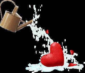лейка с сердцем
