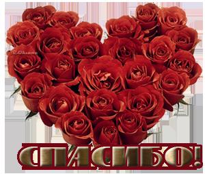 Празднование ДНЯ РОЖДЕНИЯ ФОРУМА. 0_f53b7_5a830503_orig