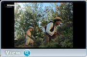 http//img-fotki.yandex.ru/get/15508/40980658.3c/0_1209ef_cc891b52_orig.png