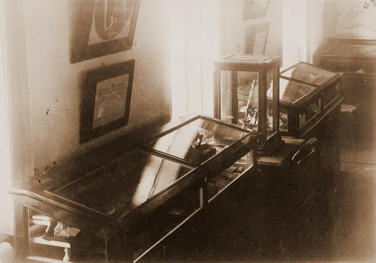64. Вид витрин с образцами пород золоторудных месторождений