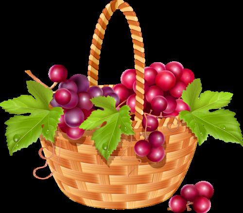 виноград (2).png
